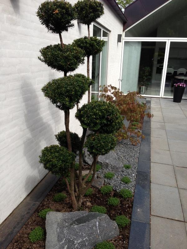 Privat have - ændring af bassin til Japansk inspireret bed ...